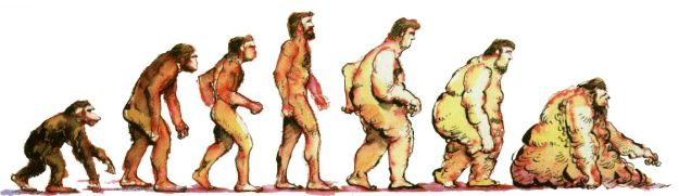 deitel-evolution-obesity