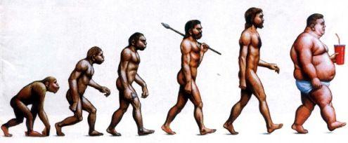 evolucionobesidad